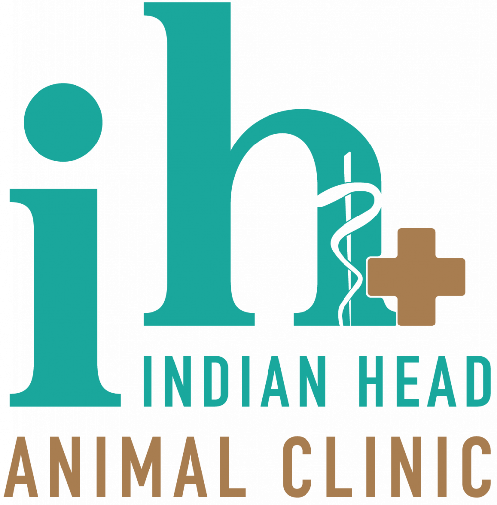 Indian Head Animal Clinic in Indian Head Saskatchewan